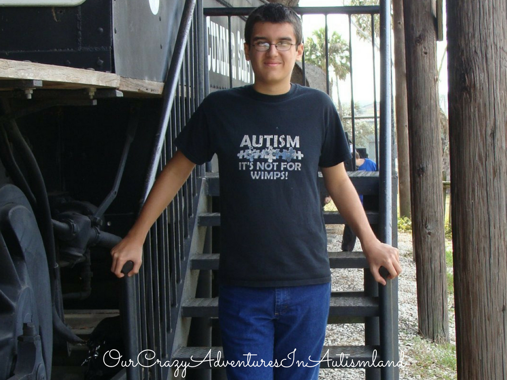 What is recovery from autism and is it possible? See how one family defines their child's progress from the effects of autism.