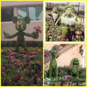 FlowerandGardenFestival