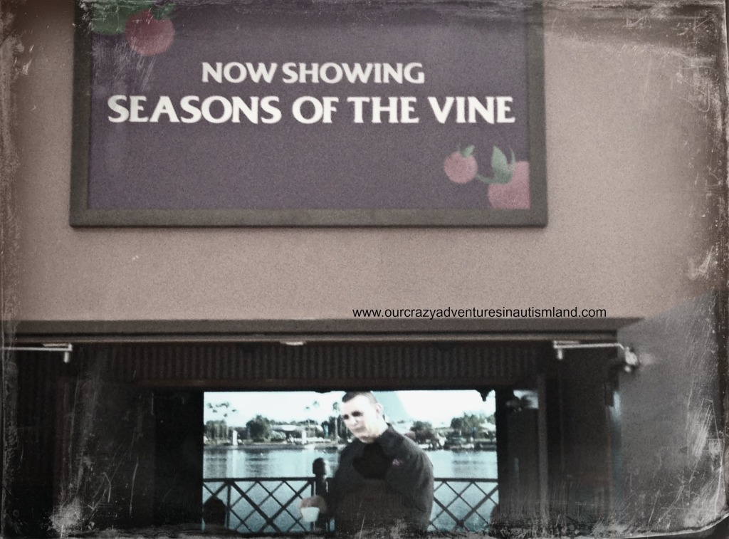 Seasons of the Vine