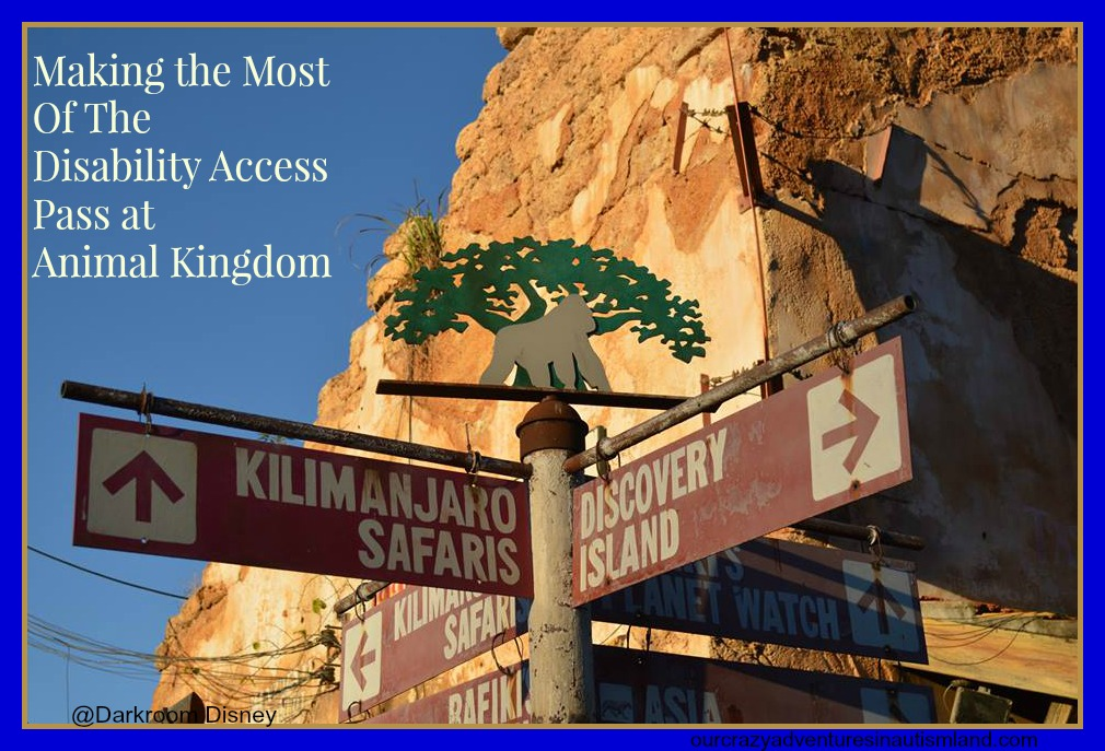 Making the Most of the Disability Access Pass in Animal Kingdom.
