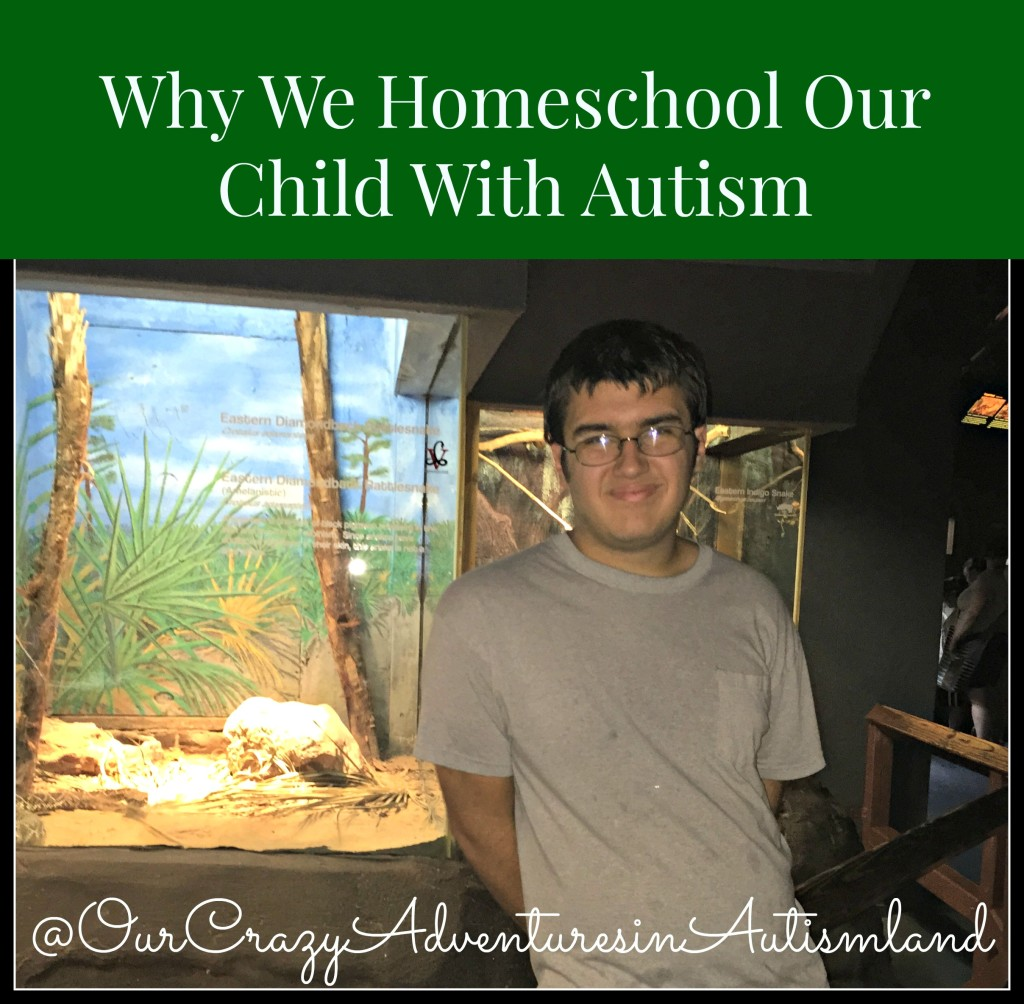 Day 1 of our 31 day series explains our reasoning behind why we homeschool our child with autism