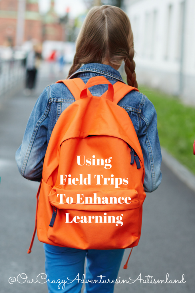 Using field trips is a great way to enhance your homeschool learning