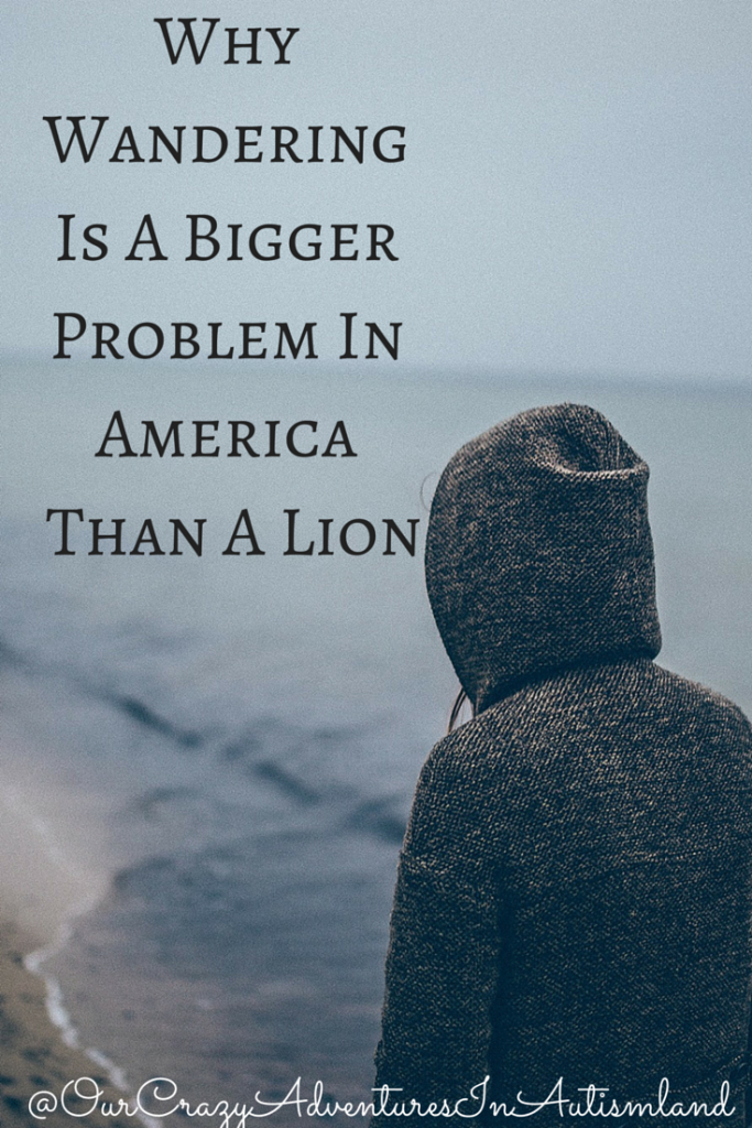 Why wandering in children with autism is a bigger problem in America than a lion dying in Zimbabwe