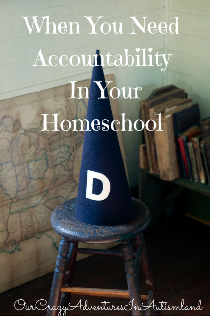 when-you-need-accountability-in-your-homeschool