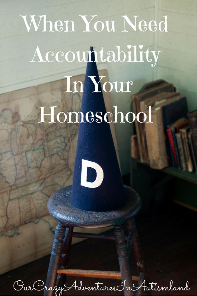 when-you-need-accountability-in-your-homeschool