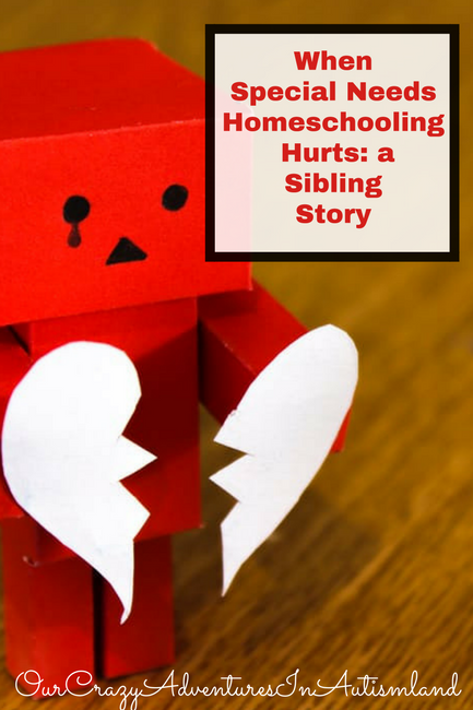 When Special Needs Homeschooling Hurts: A Sibling Story