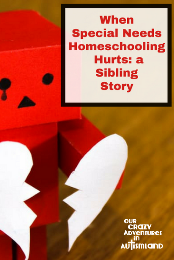 When special needs homeschooling hurts: a sibling story is an honest look at how one mom changed her families' learning to make one child safe.
