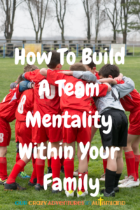Take a team mentality to unite your family into one cohesive unit . Everyone yearns to belong to something bigger than themselves.