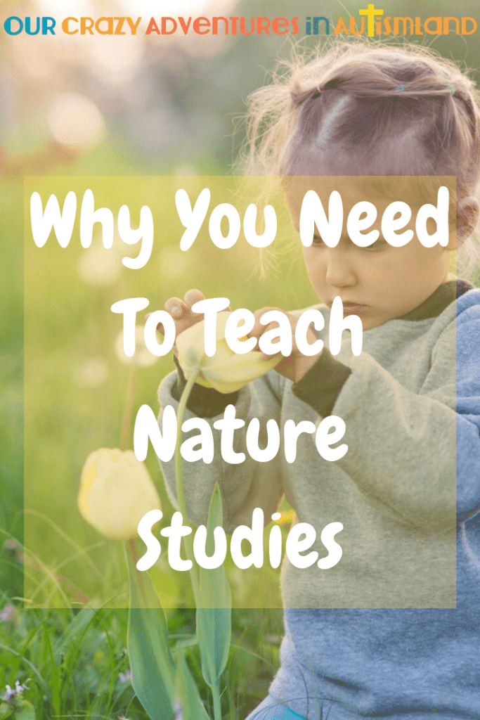 Nature studies are an excellent alternative to science for those kids who would rather be outside than looking at a textbook. #autismland #homeschool #nature